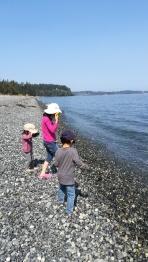 子どもたちは水遊び。カナダの海は冷たく、浅瀬でないと泳げません。