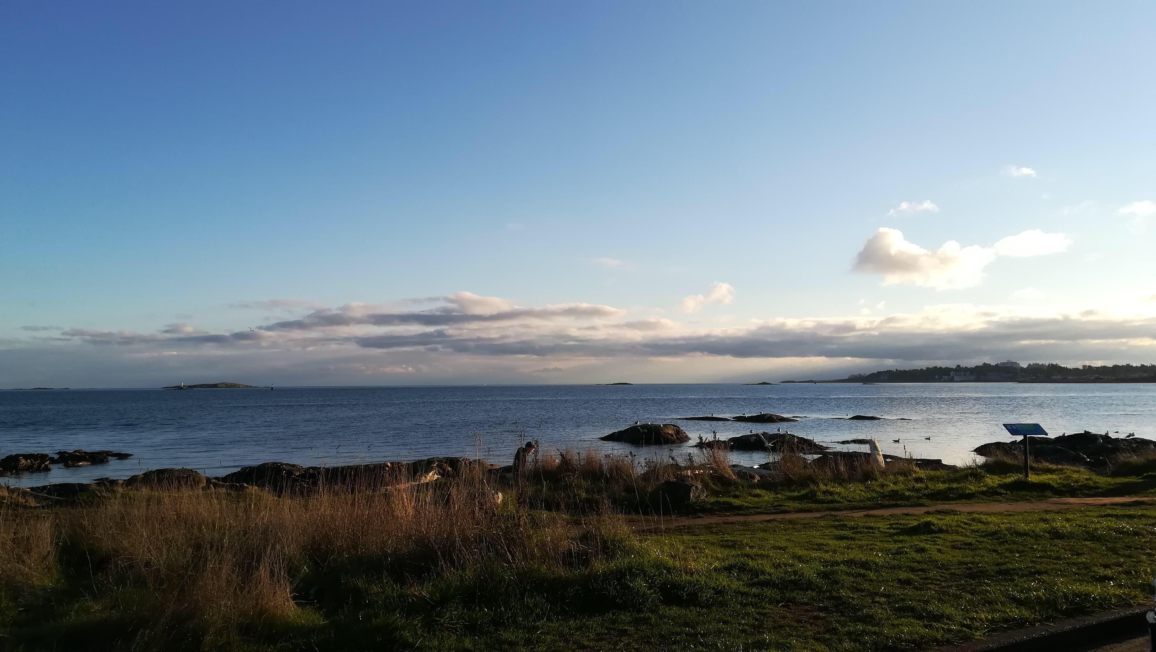 Clover Point